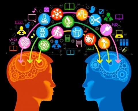 Что такое интеллект и как его развивать